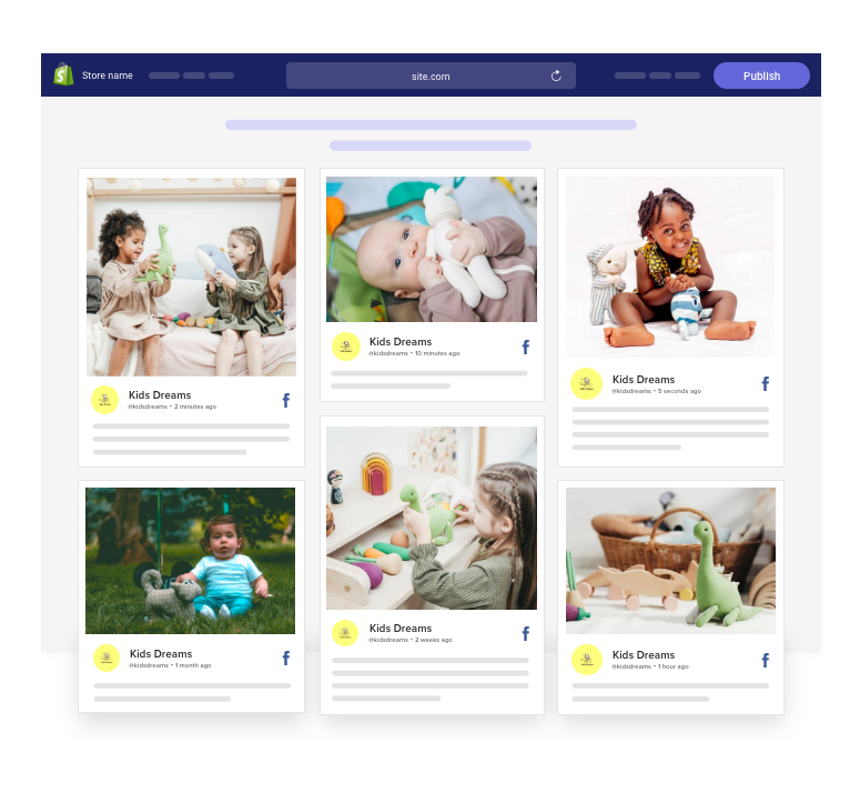 facebook widget on shopify